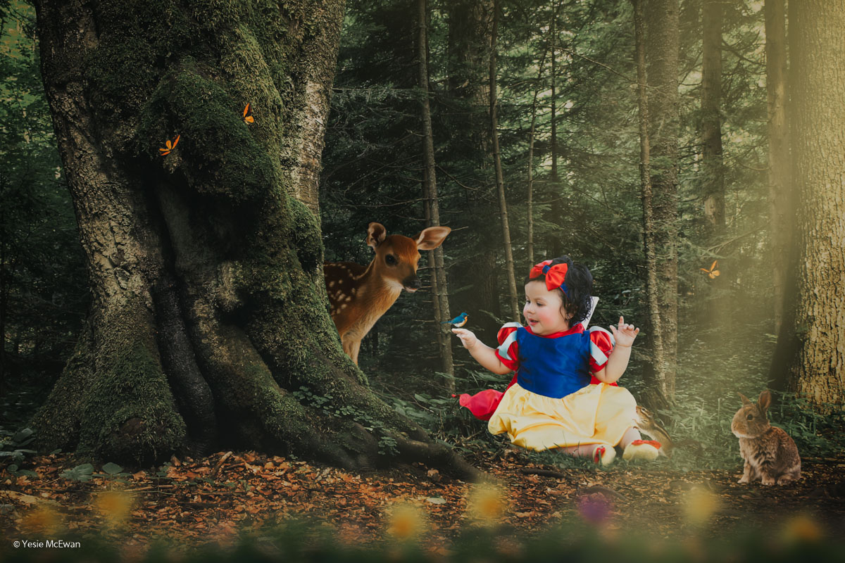 Snow White learns that her stepmother the Evil Queen has made an attempt on her life. Taking the Huntsman's advice she flees to the dark forest and runs for her life!