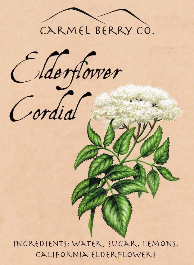 Elderflower Cordial, the second label designed for the Carmel Berry Company.