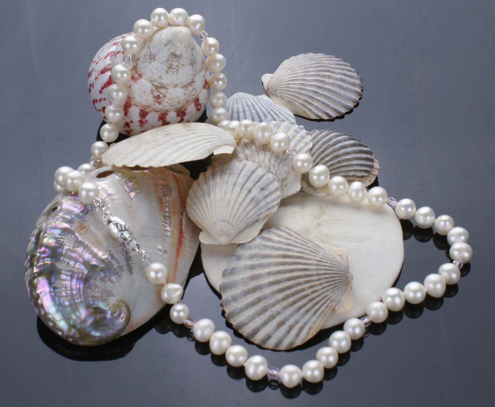Pearls on Shells