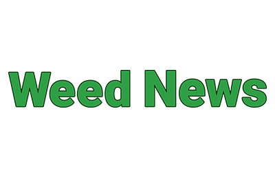 UC Berkeley and HelloMD Study Shows Patients Prefer Cannabis to Opioids - Jun. 29, 2017