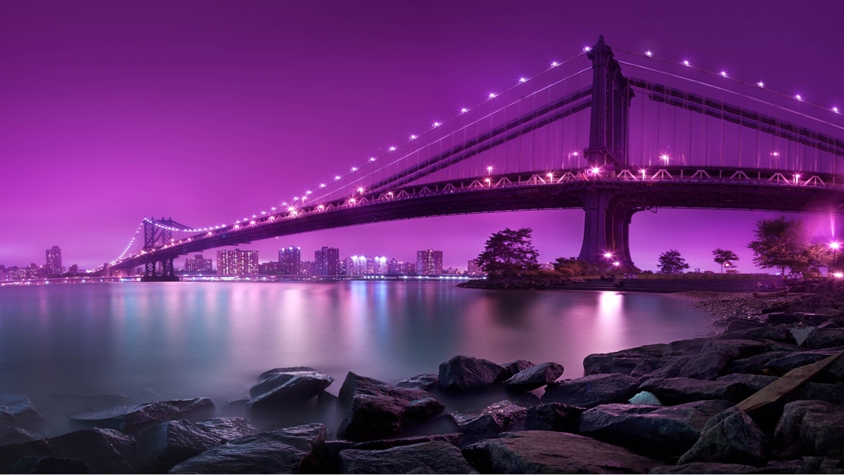 Learn to Navigate the NY Health Tech Landscape With StartUp Health - Feb. 12, 2013