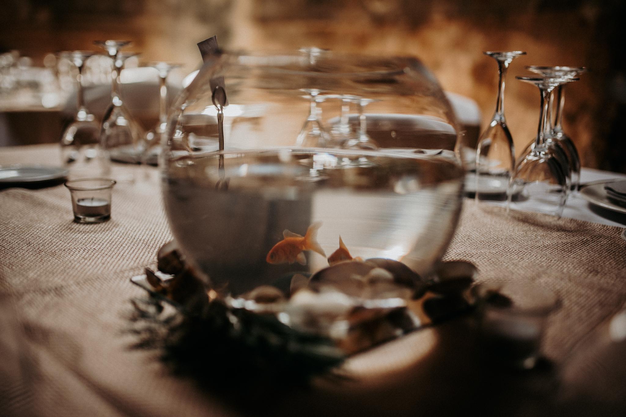 sonia boda-2.jpg