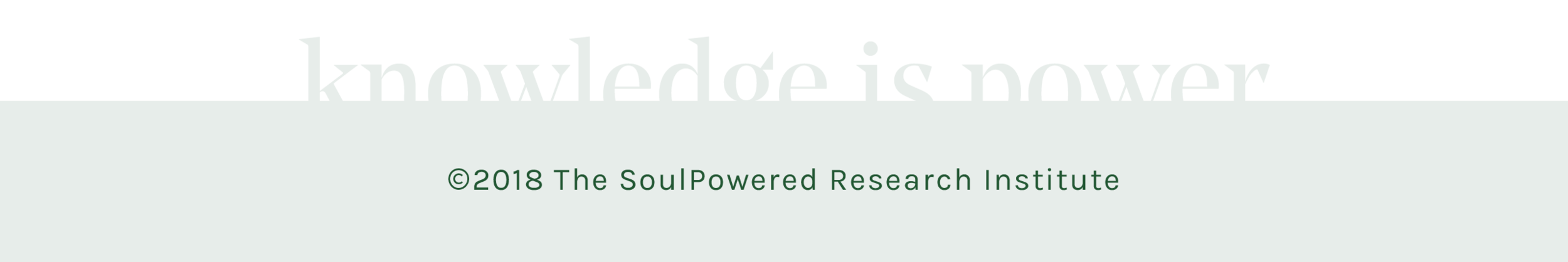SPResearchInstitute-Newsletter-FooterText2018-2560x427.png