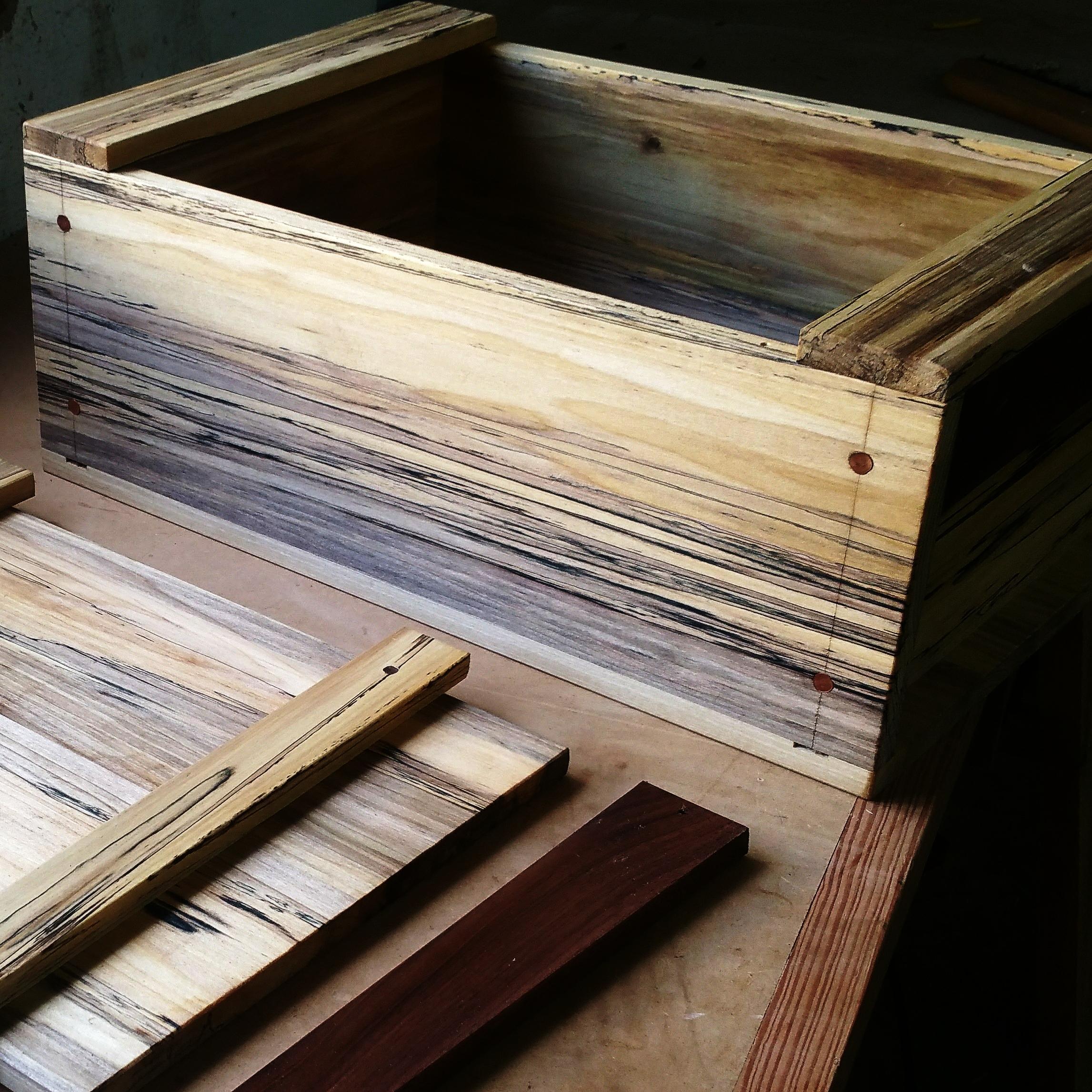 Poplar Box.jpg