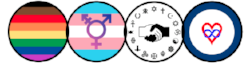 inclusivity icons on white.png