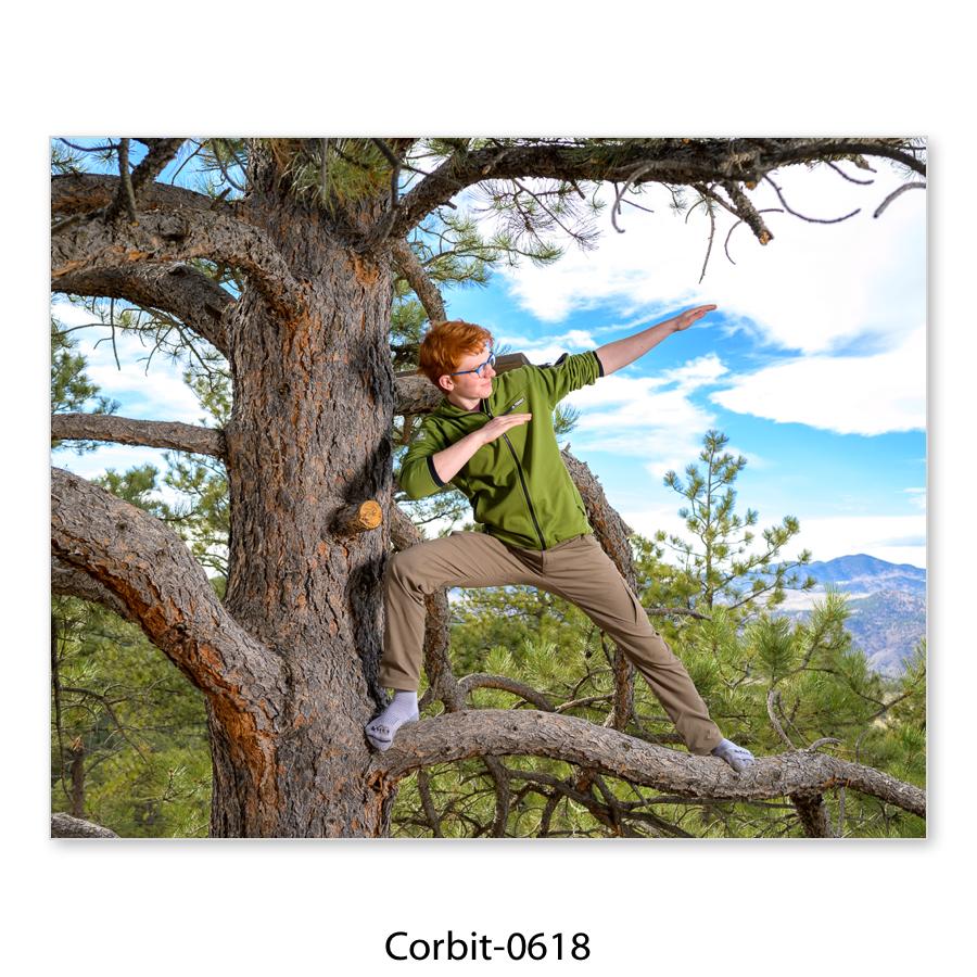 Corbit-33.jpg