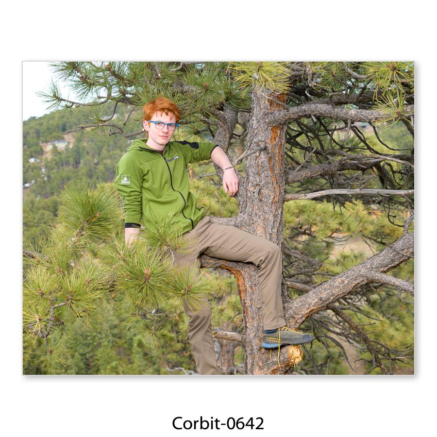 Corbit-43.jpg