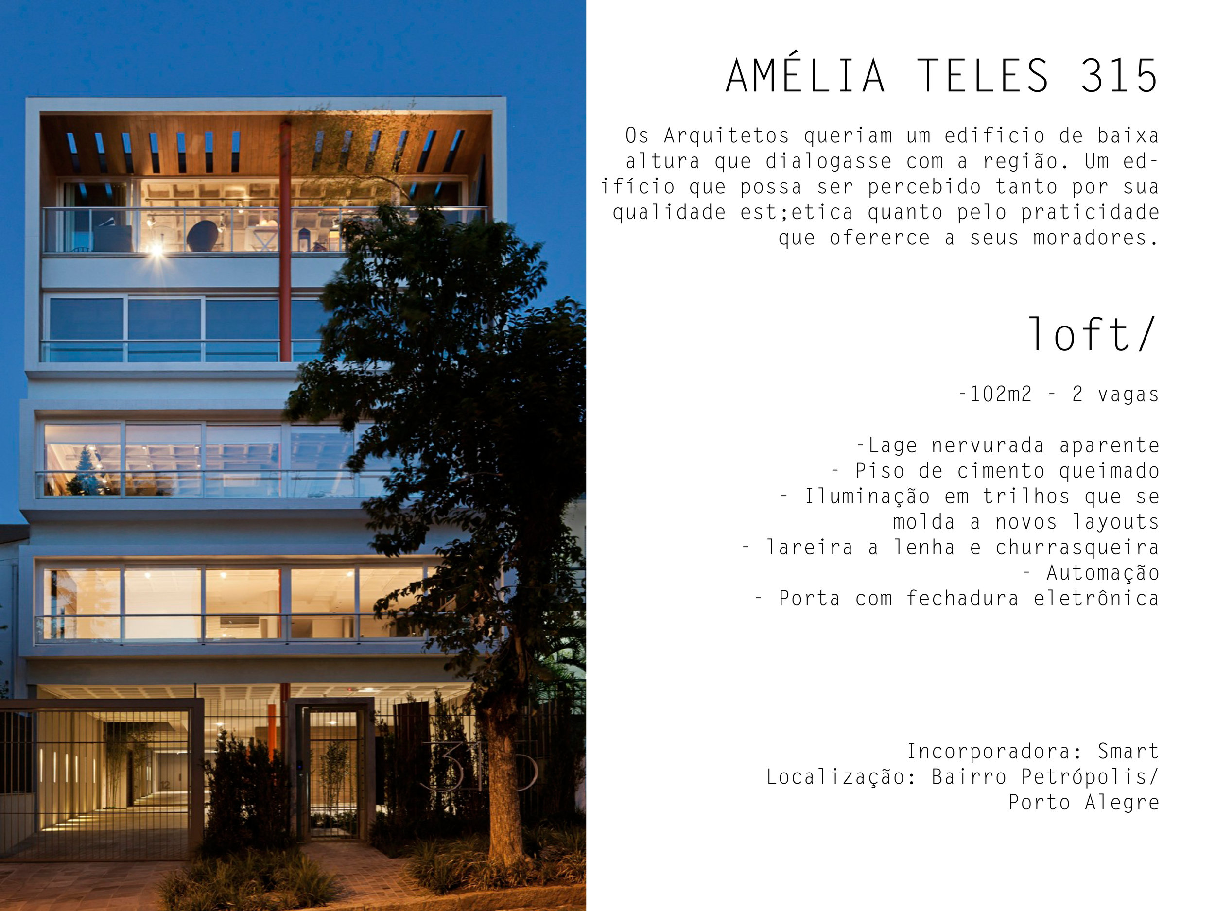 amelia 05.jpg