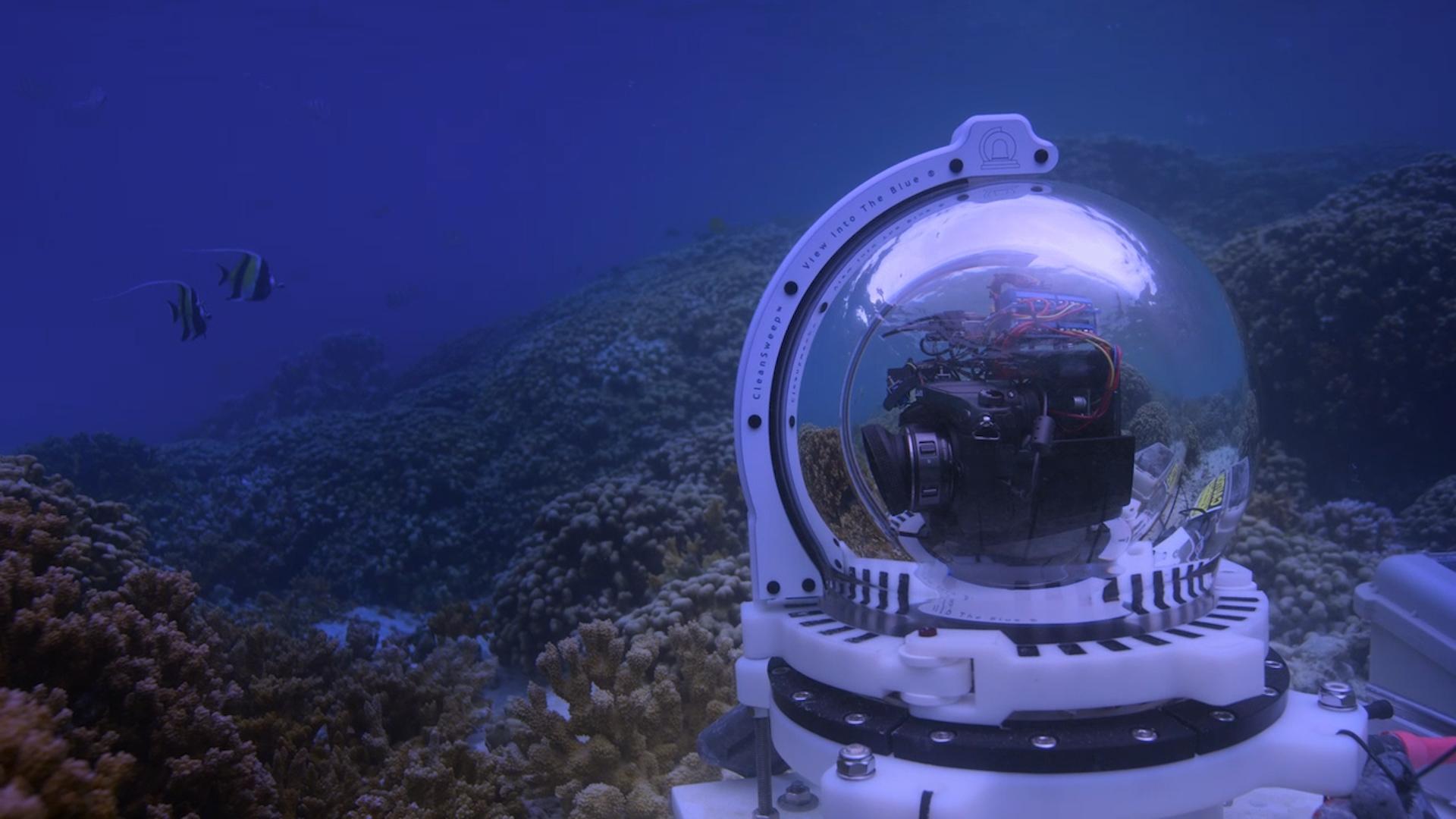 Image Courtesy Netflix - Chasing Coral 3.jpg