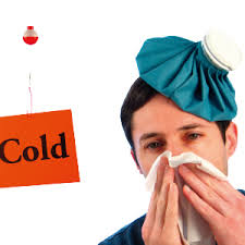 Why Do You Get Sick so Easily? - What you eat directly effects your immunity system.