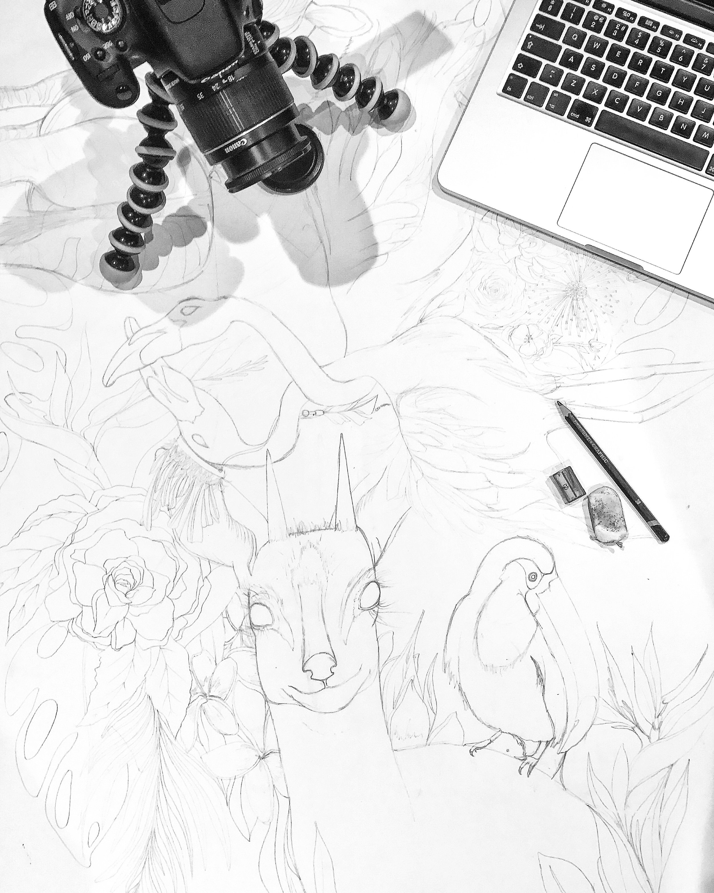 UNTITLED PIECE - The main piece i'm currently working on is this huge, A1 tropical illustration.I actually started pencilling it out last summer but never had chance to finish it, until this summer when I dug it back out and have made it my goal once more to complete it. I've also been filming the whole process so i'll be posting a full video once i've completed it.So far some flamingos, a zebra, an African deer and a toucan have appeared amongst tropical foliage and blooms.The plan is to make this as bright and intricate as possible but i'm still yet to think of a name. Hopefully as the full picture emerges, one will come to mind.Feel free to leave me some suggestions and follow more progress over on Instagram.