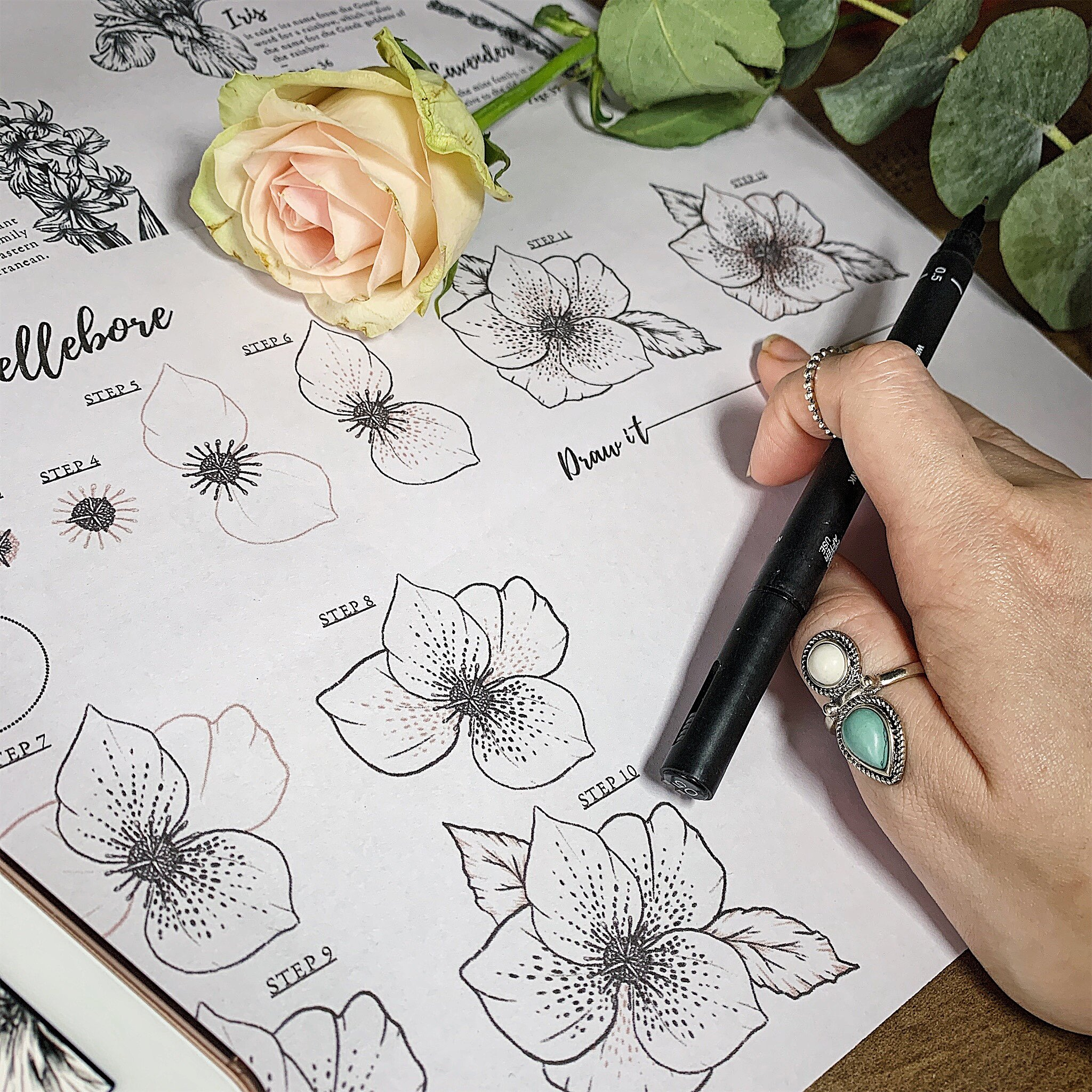 How To Draw Flowers 40 Step By Step Tutorials Ebook Felicity Ink