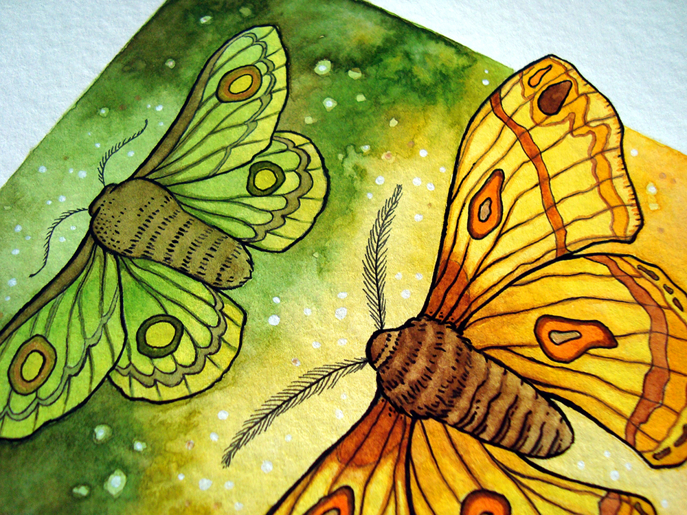 AutumnalMoths-detail.jpg
