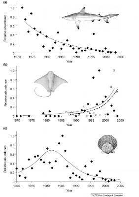 (Heithaus et al. 2008)