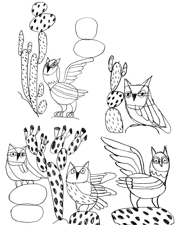 owls on rocks.jpg