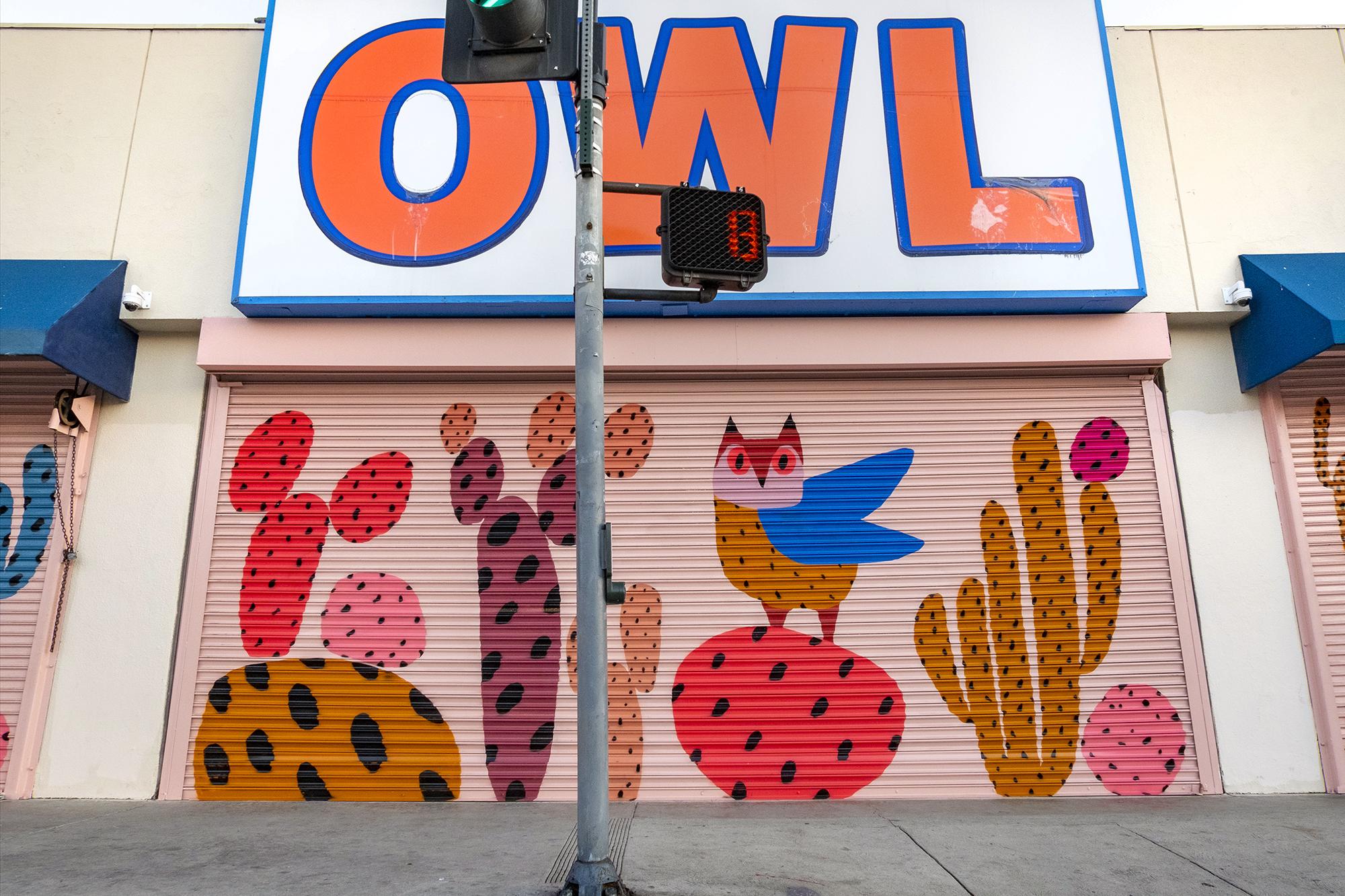 owl close.jpg