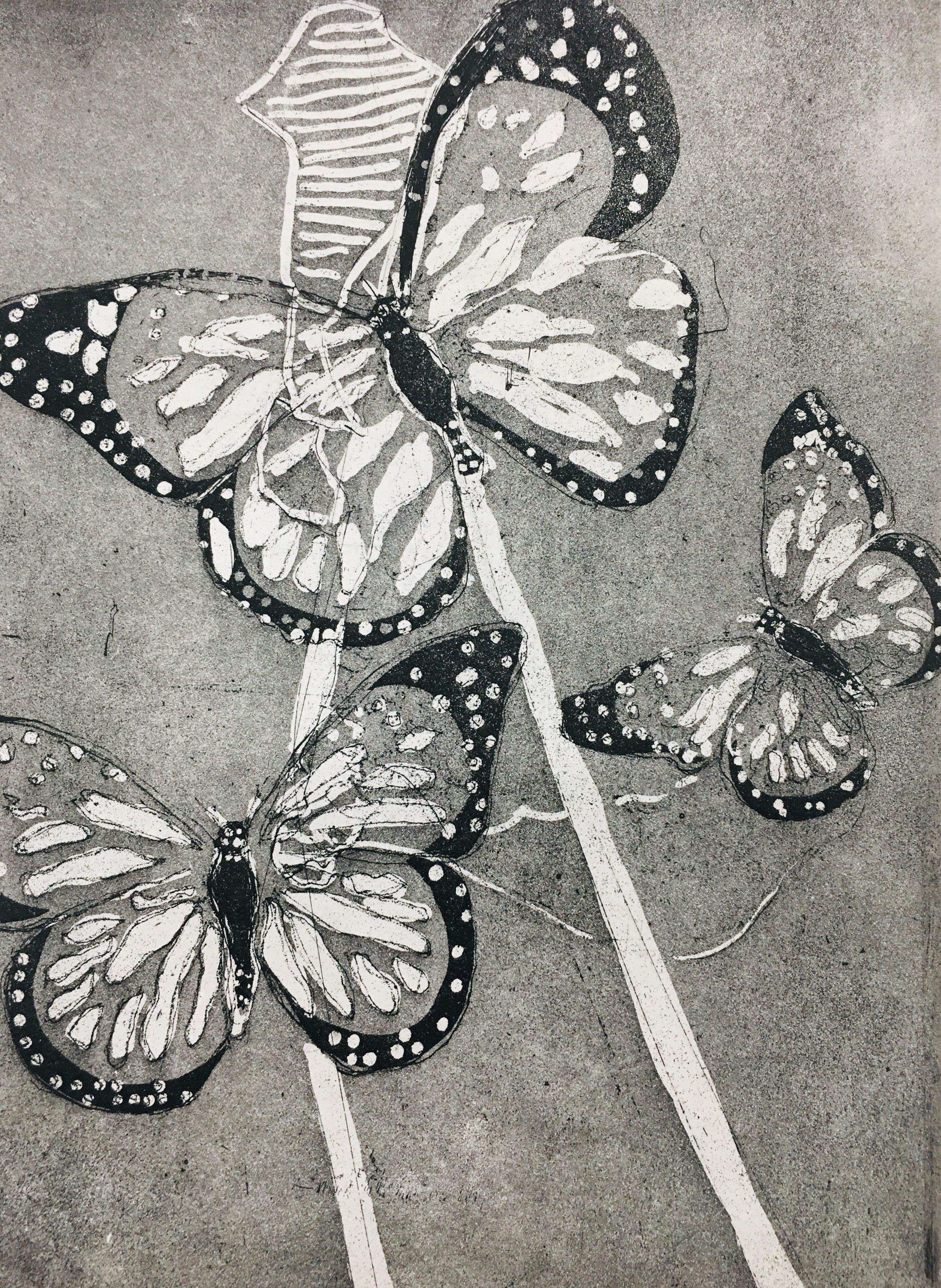 """Monarchs copper intaglio etching 12"""" x 14"""""""