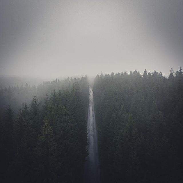 Destination unknown in the misty Swedish forest.  #welcometonature #naturelovers #travel #sweden #visitsweden #ig_sweden #nature #landscape #adventure #outdoors #visitscandinavia #photooftheday #picoftheday #roadtrip #fog #instagood #toursweden #explore #tree #naturephotography #forest #dji #mavicpro #dronestagram #drone #swedenmylove #moodygrams #instadaily #droneoftheday #aerial