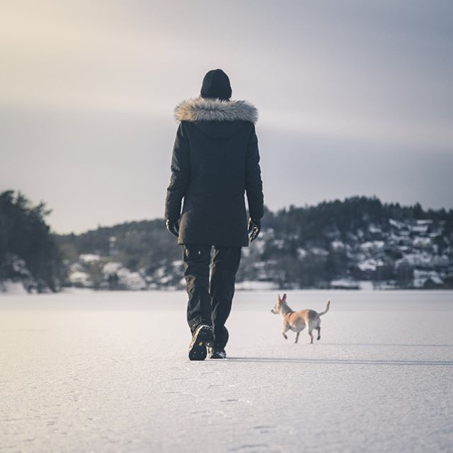 Taking a stroll on a frozen lake with @rebecka_j and @gibbe_gibson.  #welcometonature #naturelovers #sweden #visitsweden #ig_sweden #nature #landscape #adventure #outdoors #visitscandinavia #photooftheday #picoftheday  #instagood #toursweden #explore  #naturephotography #swedenmylove  #instadaily #winter #sunset #beautiful #sony #lightroom #adobe #amazing #hiking
