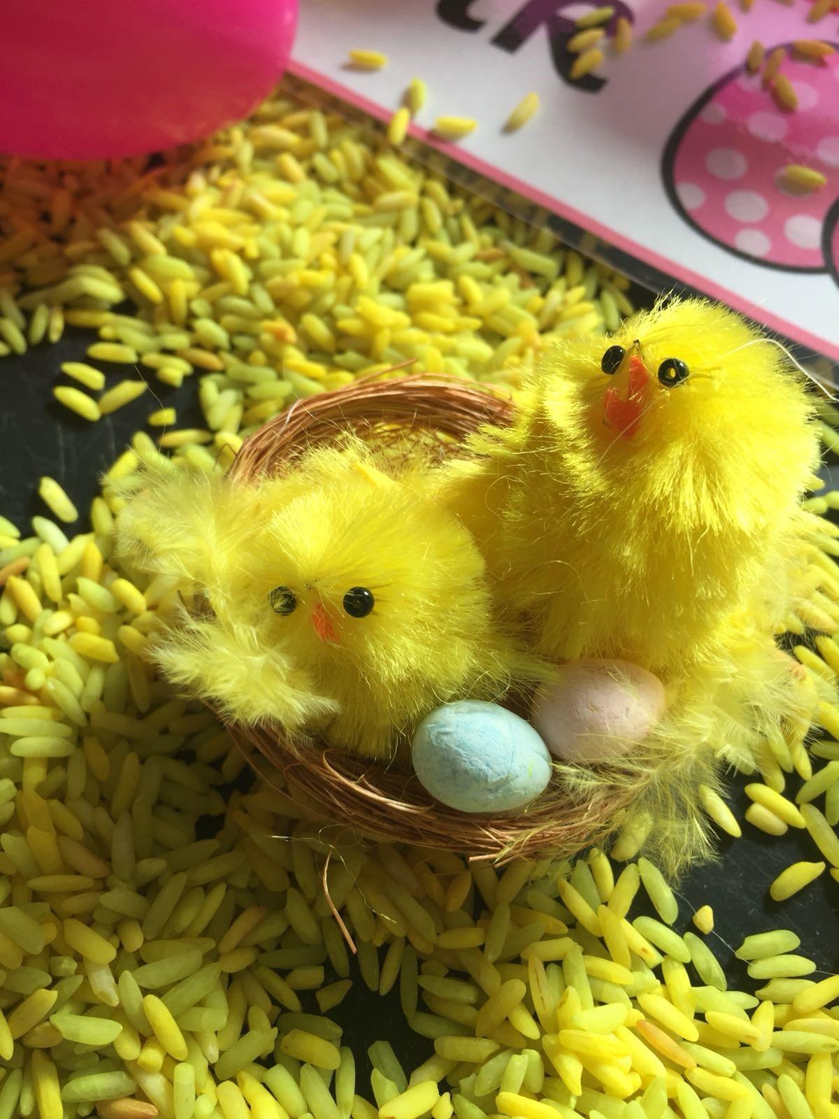 chicks and rice.jpg