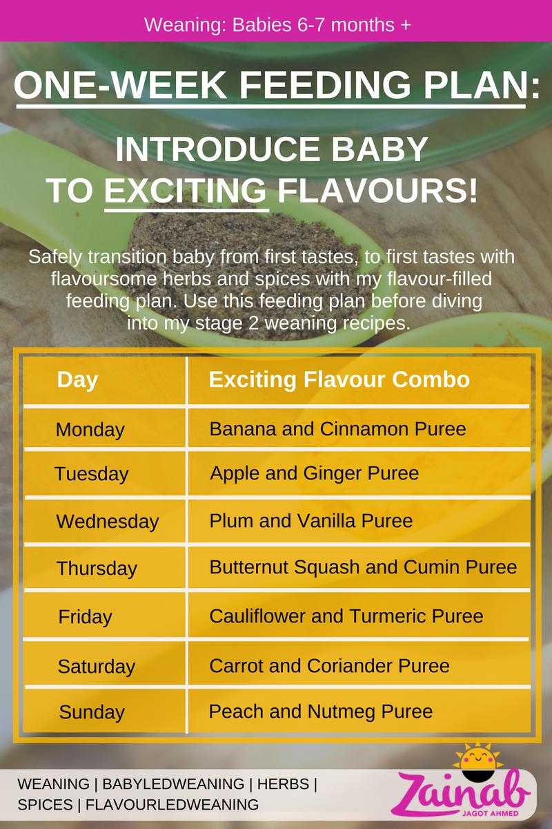 One-Week Feeding Plan.png