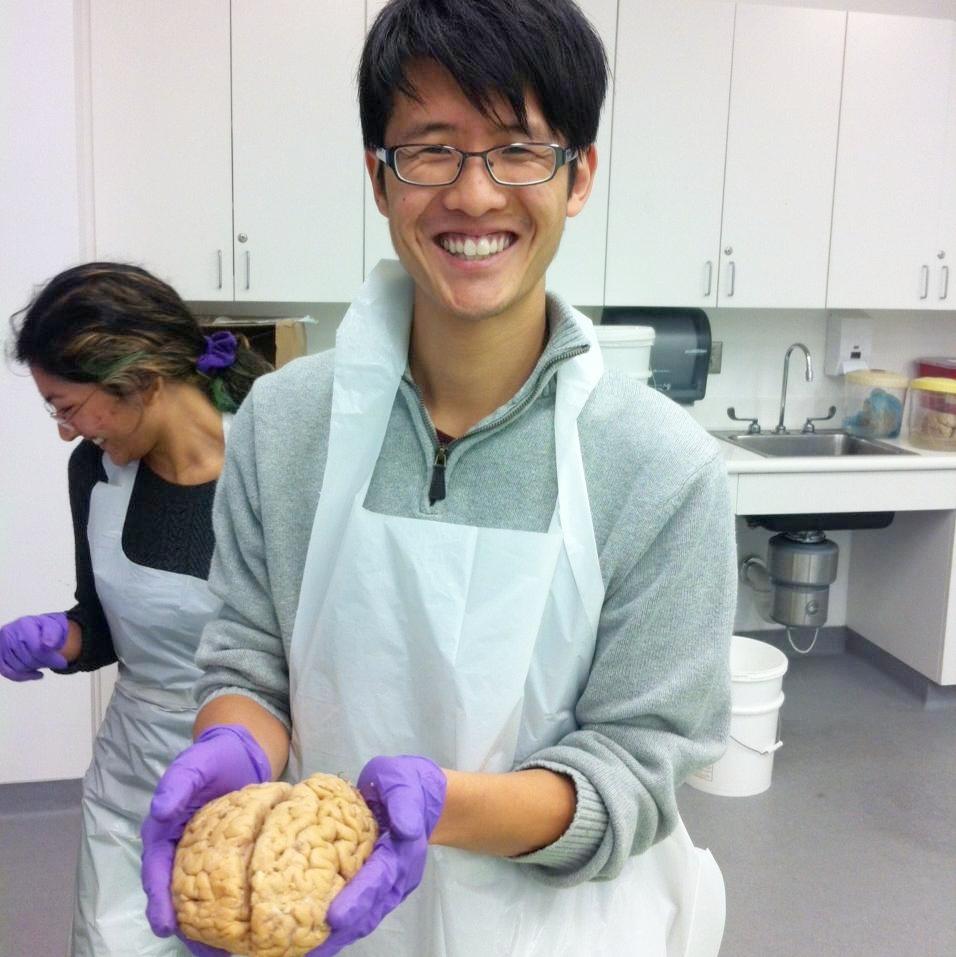 brain profile pic.jpg