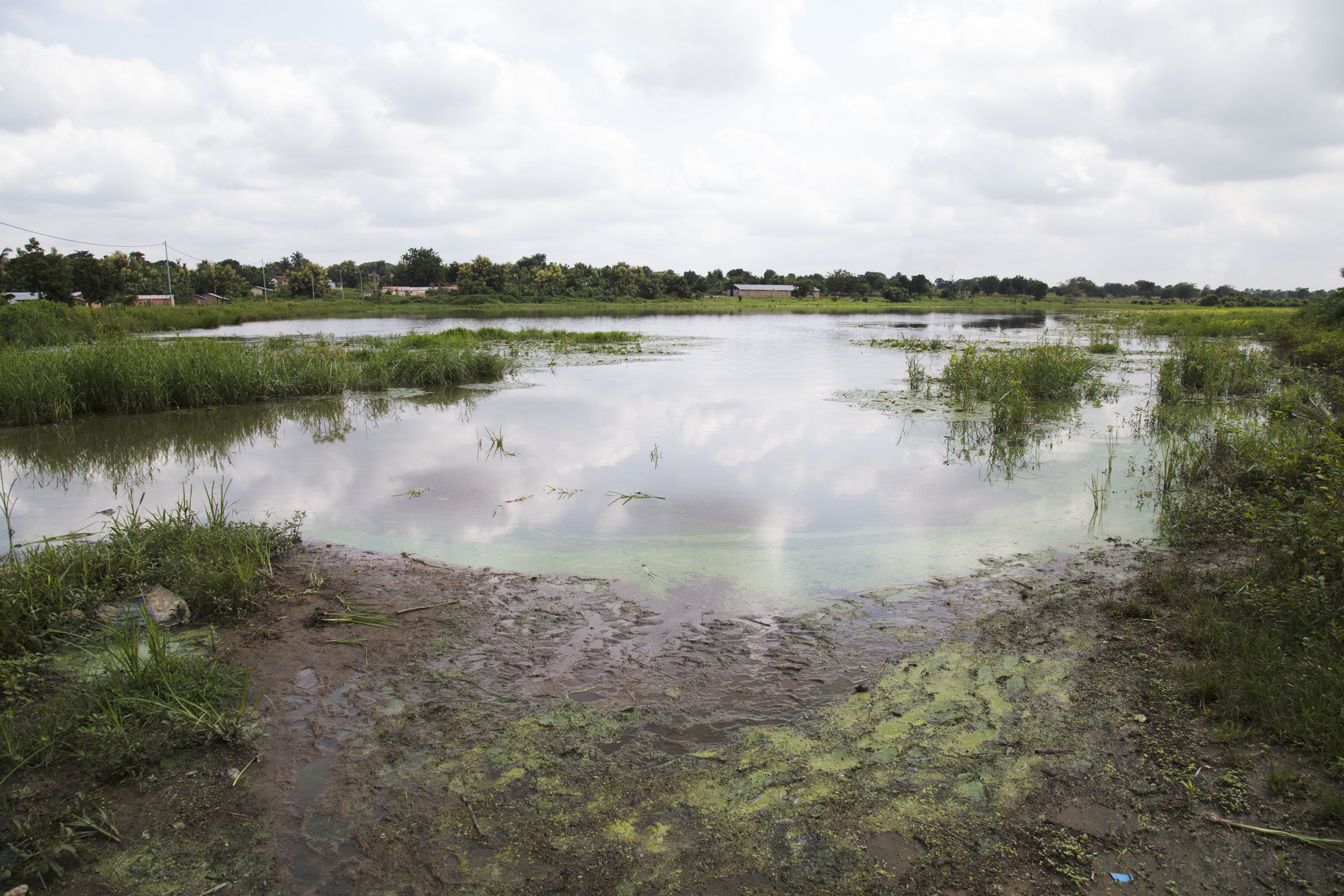 Here is an example of a dirty lake that serves as a water source for surrounding villages