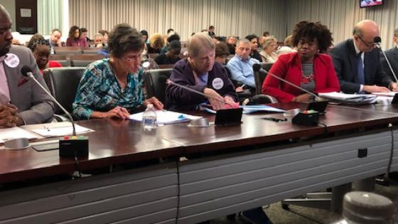 Nancy Scull WDC 2019 Testimony.png