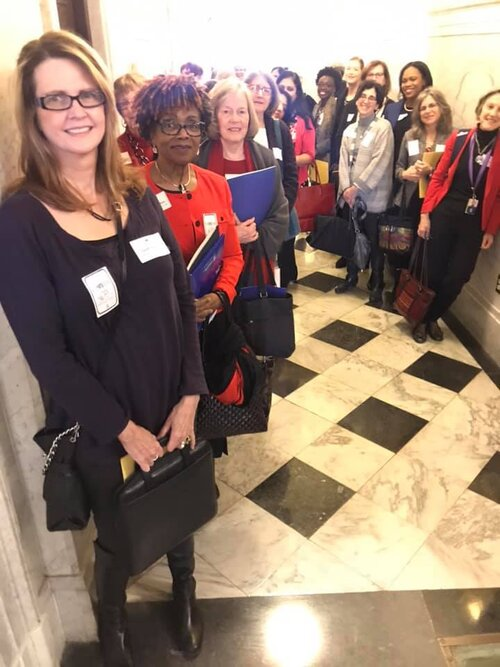 WDC Legislative Day Annapolis 2019.jpg