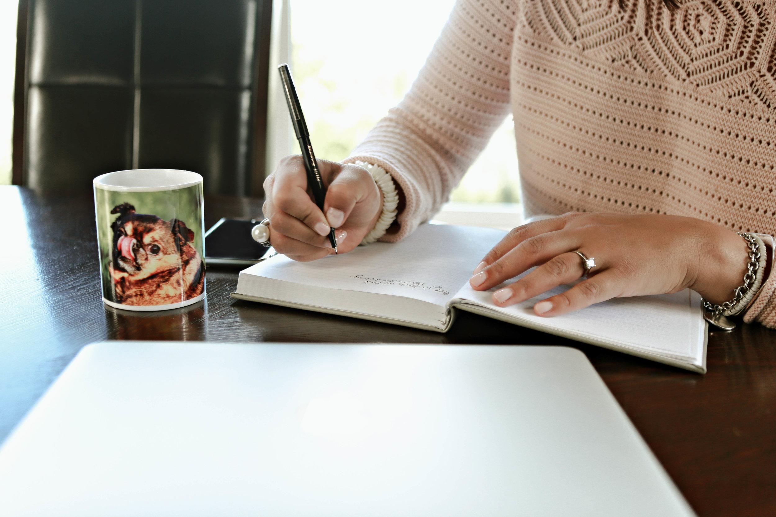 writing-mentorship