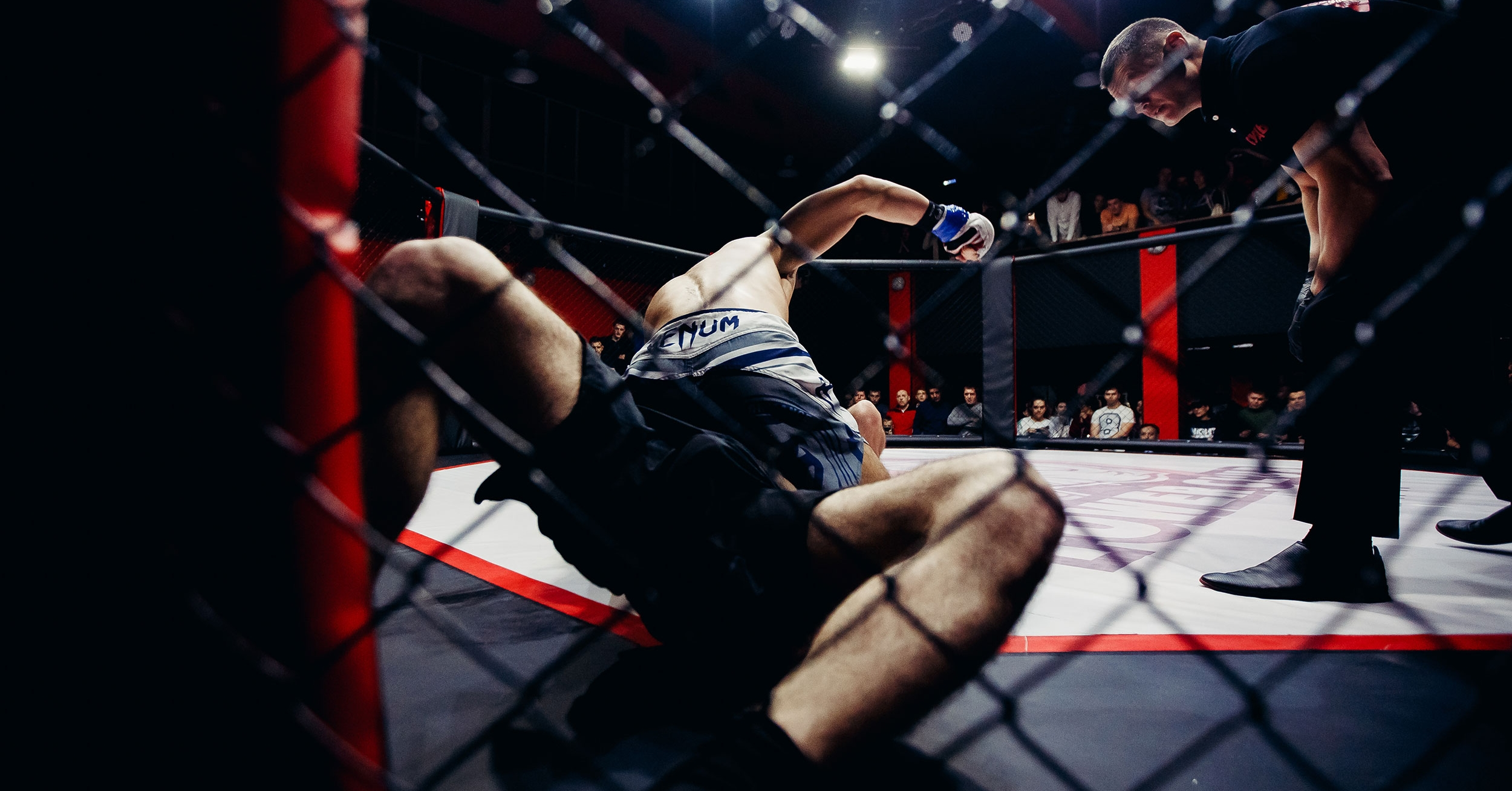 MMA fighters study proves plant-based protein is better