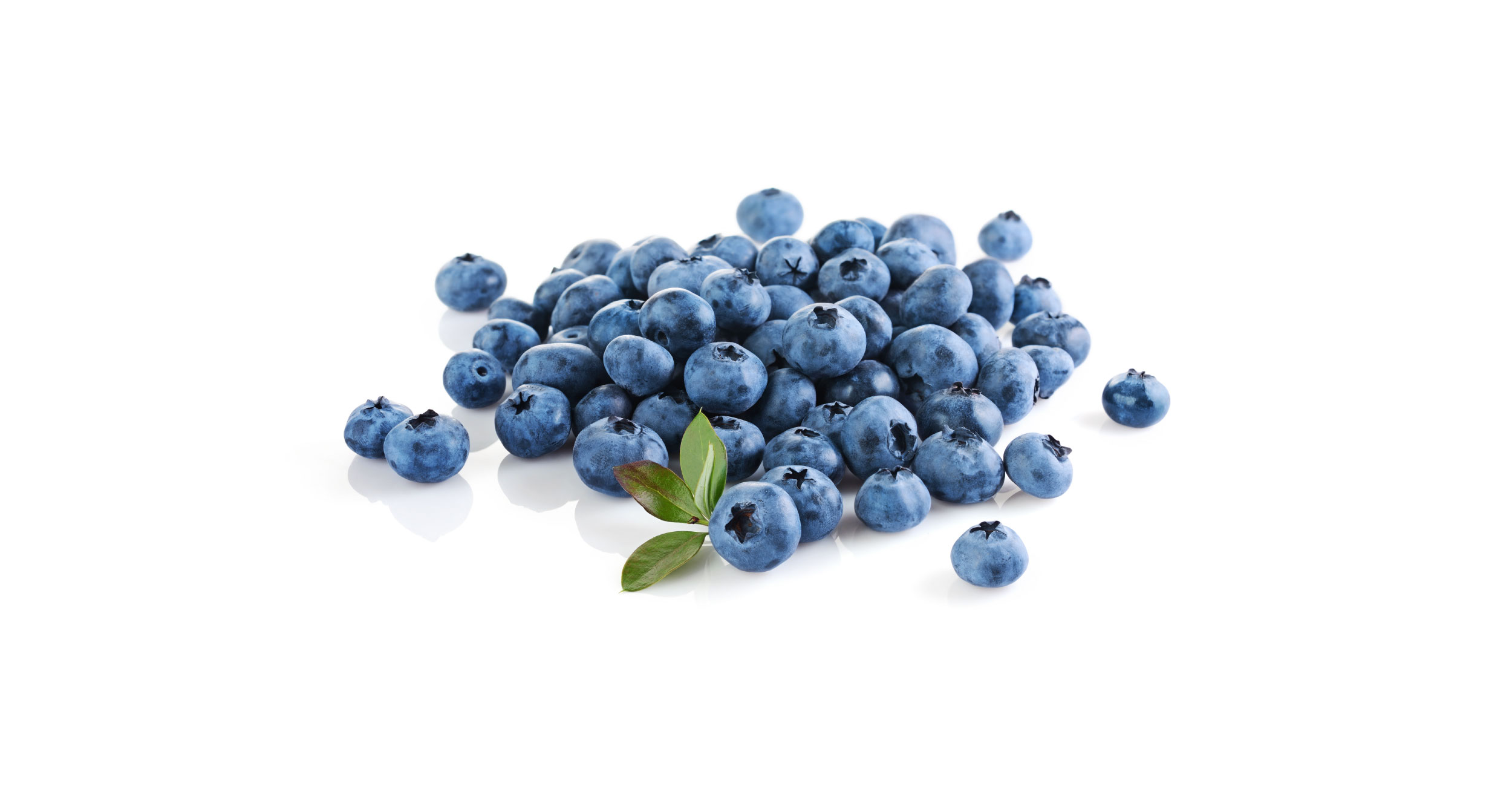 Blueberries are a healthy plant-based superfood. Vegan antioxidants and phytonutrients.