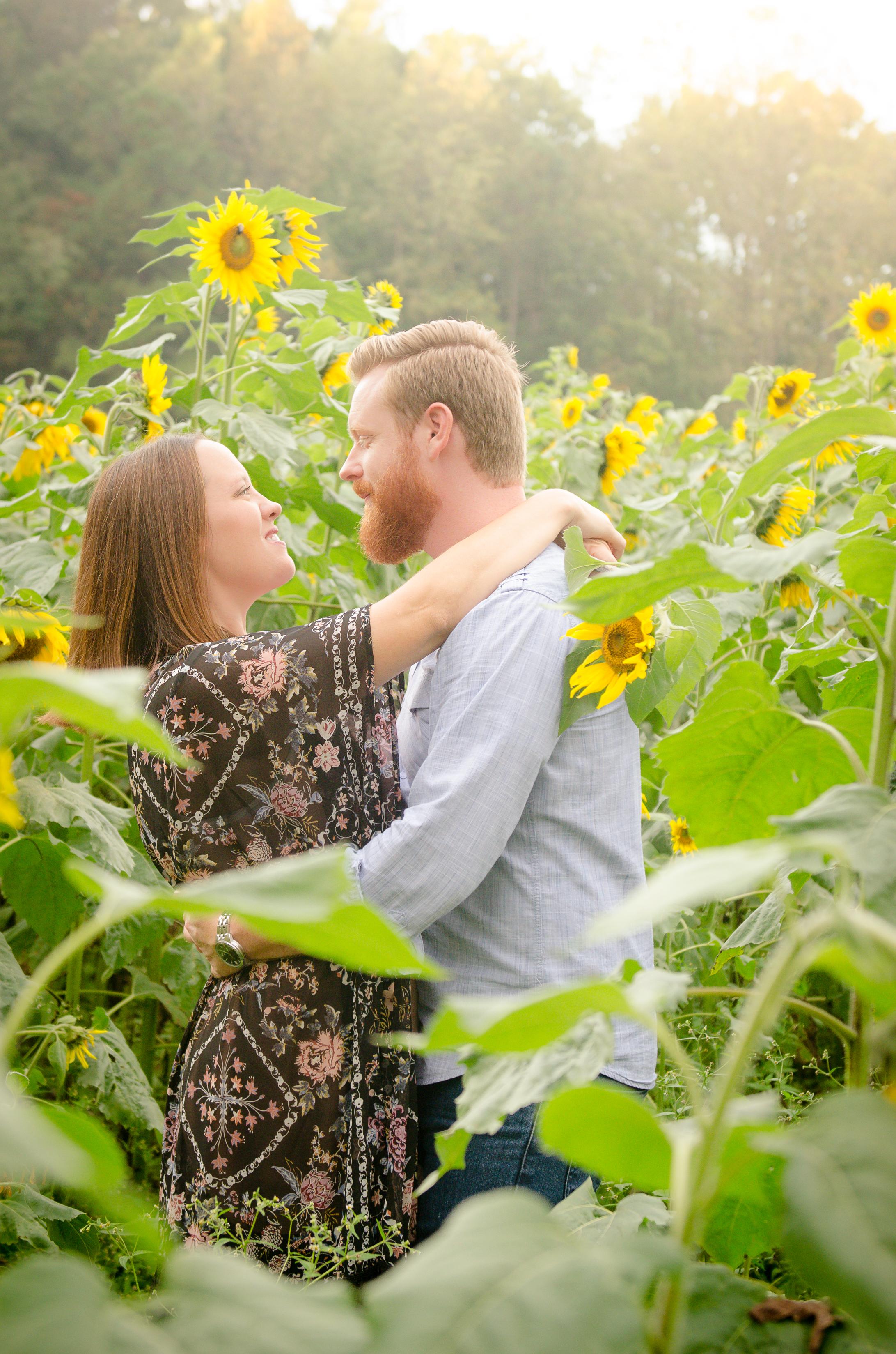 Lawleys_Sunflowers-3.jpg