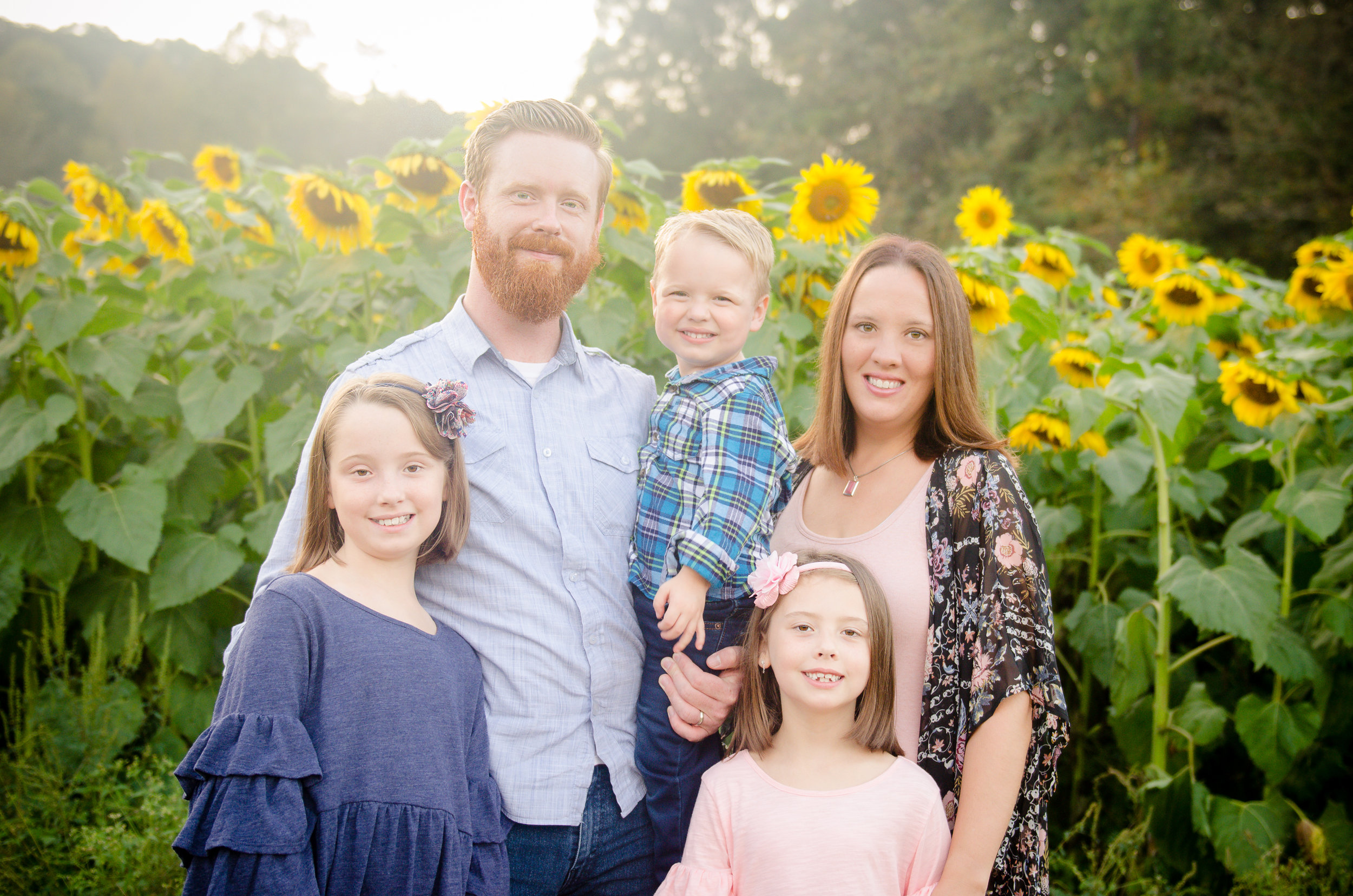Lawleys_Sunflowers-4.jpg