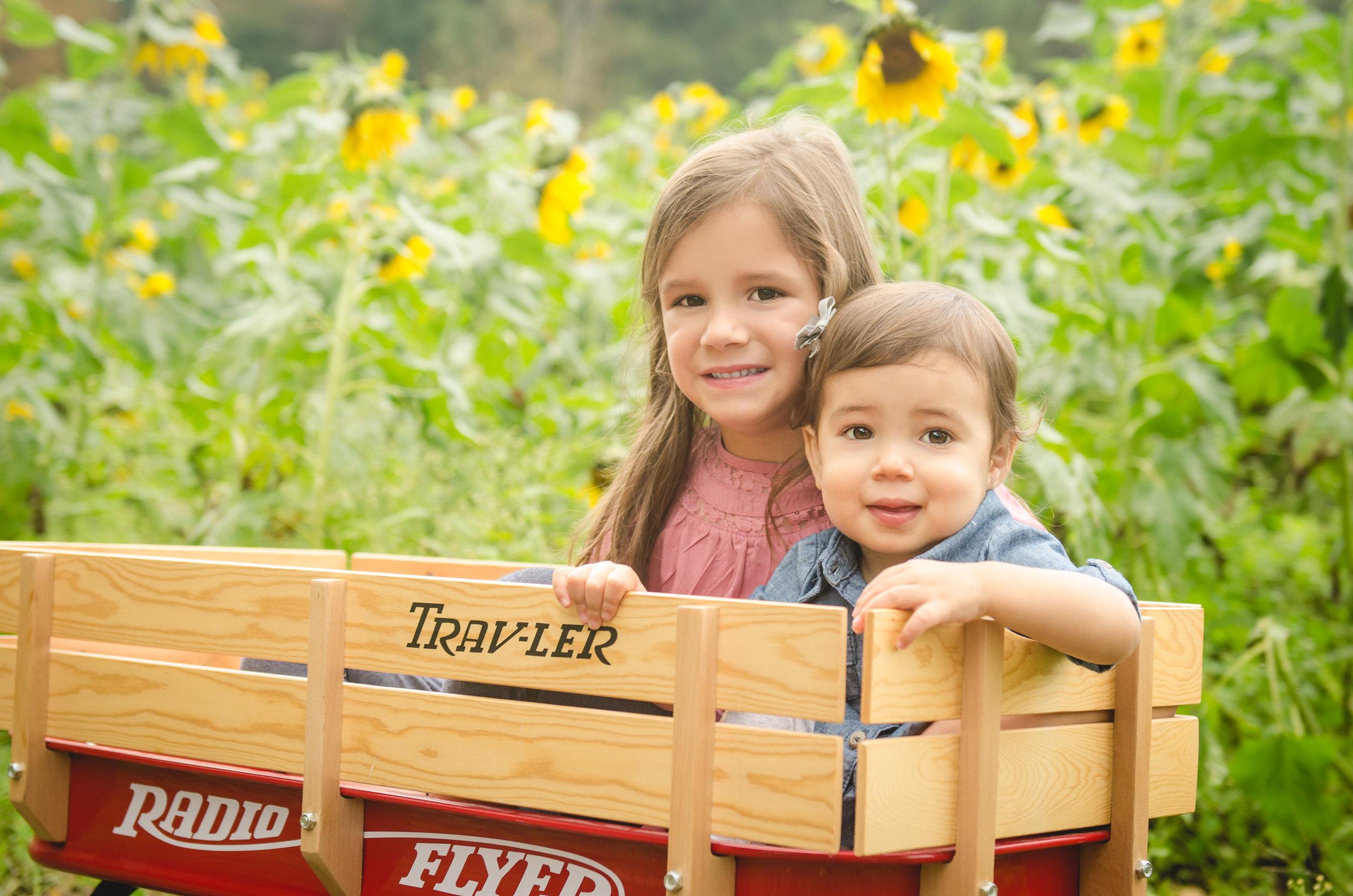 TaborSunflowers-2.jpg