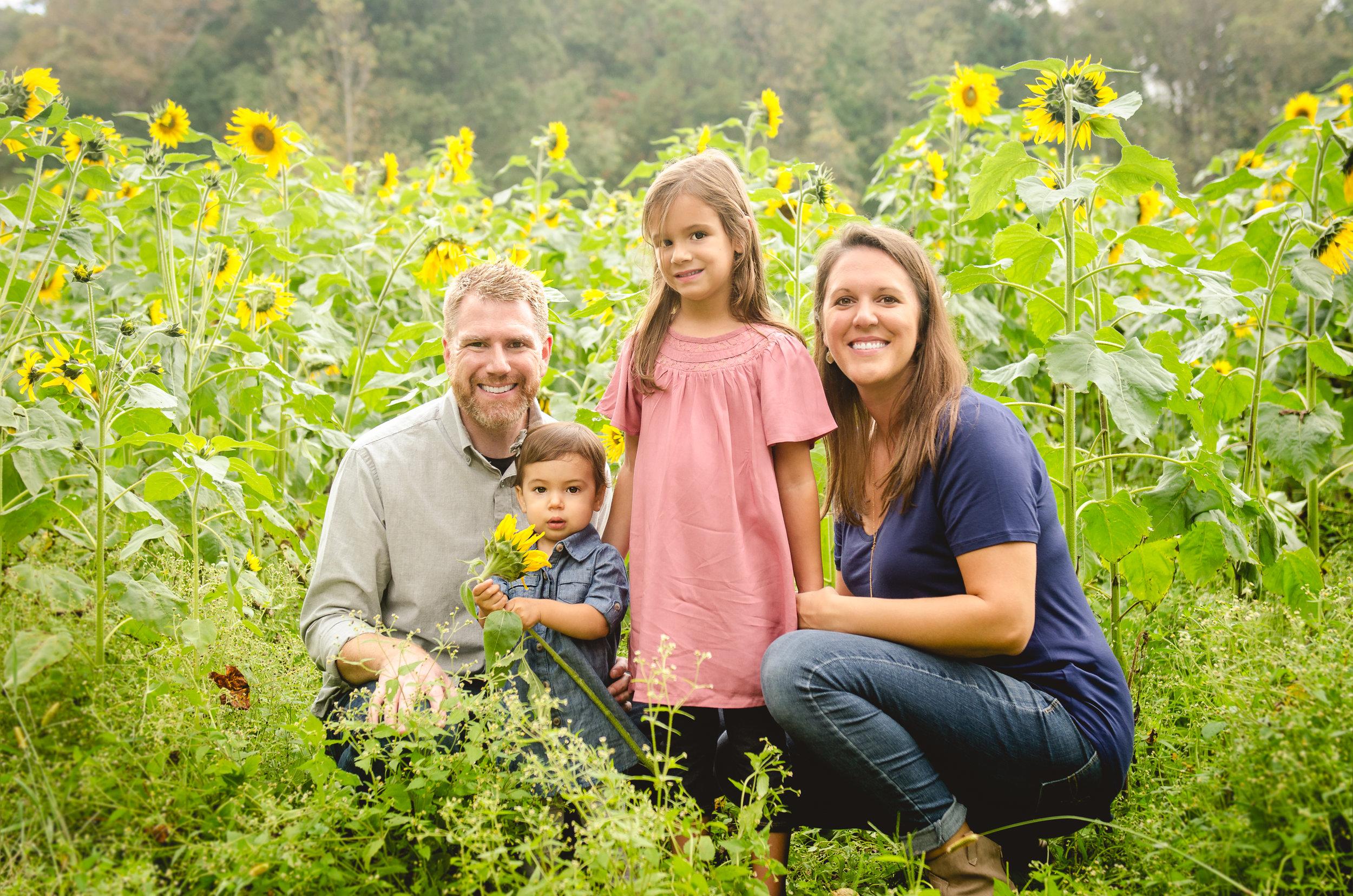 TaborSunflowers.jpg