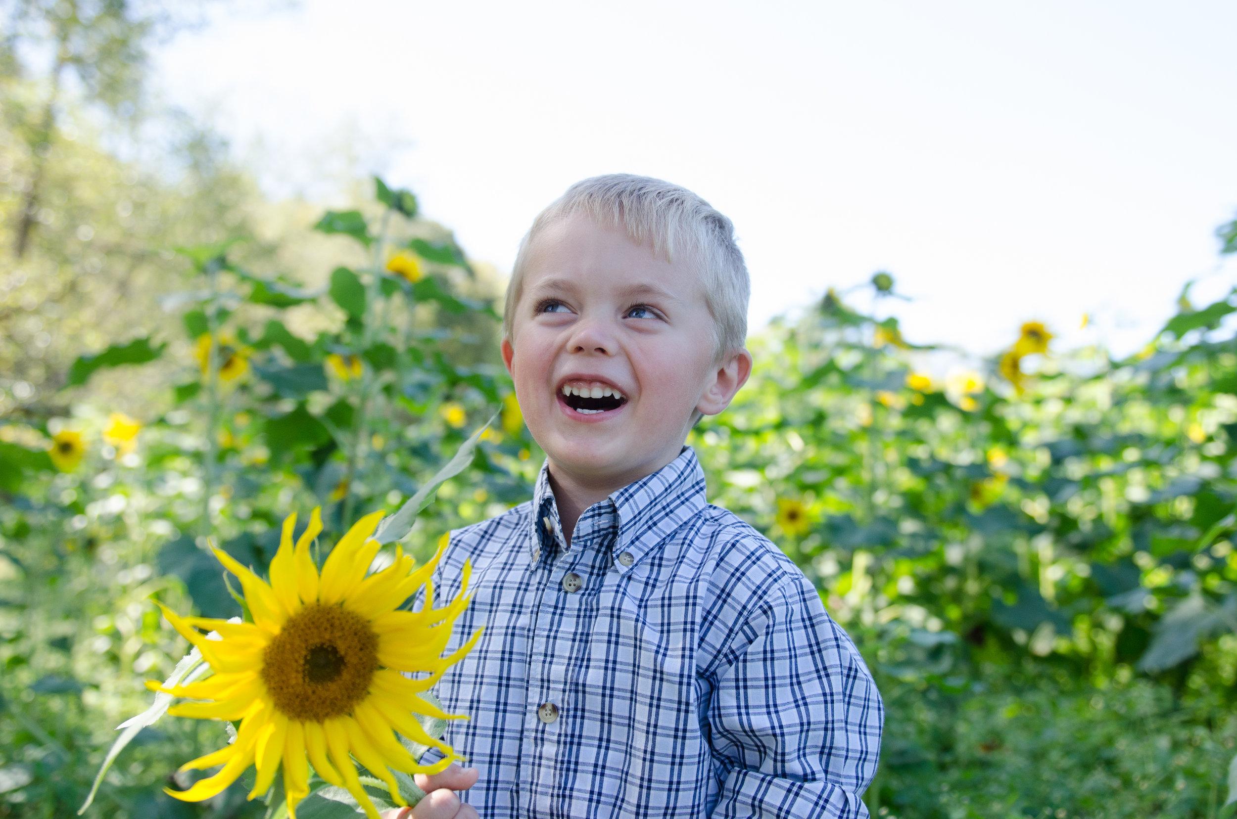 Sunflowers2017-3.jpg