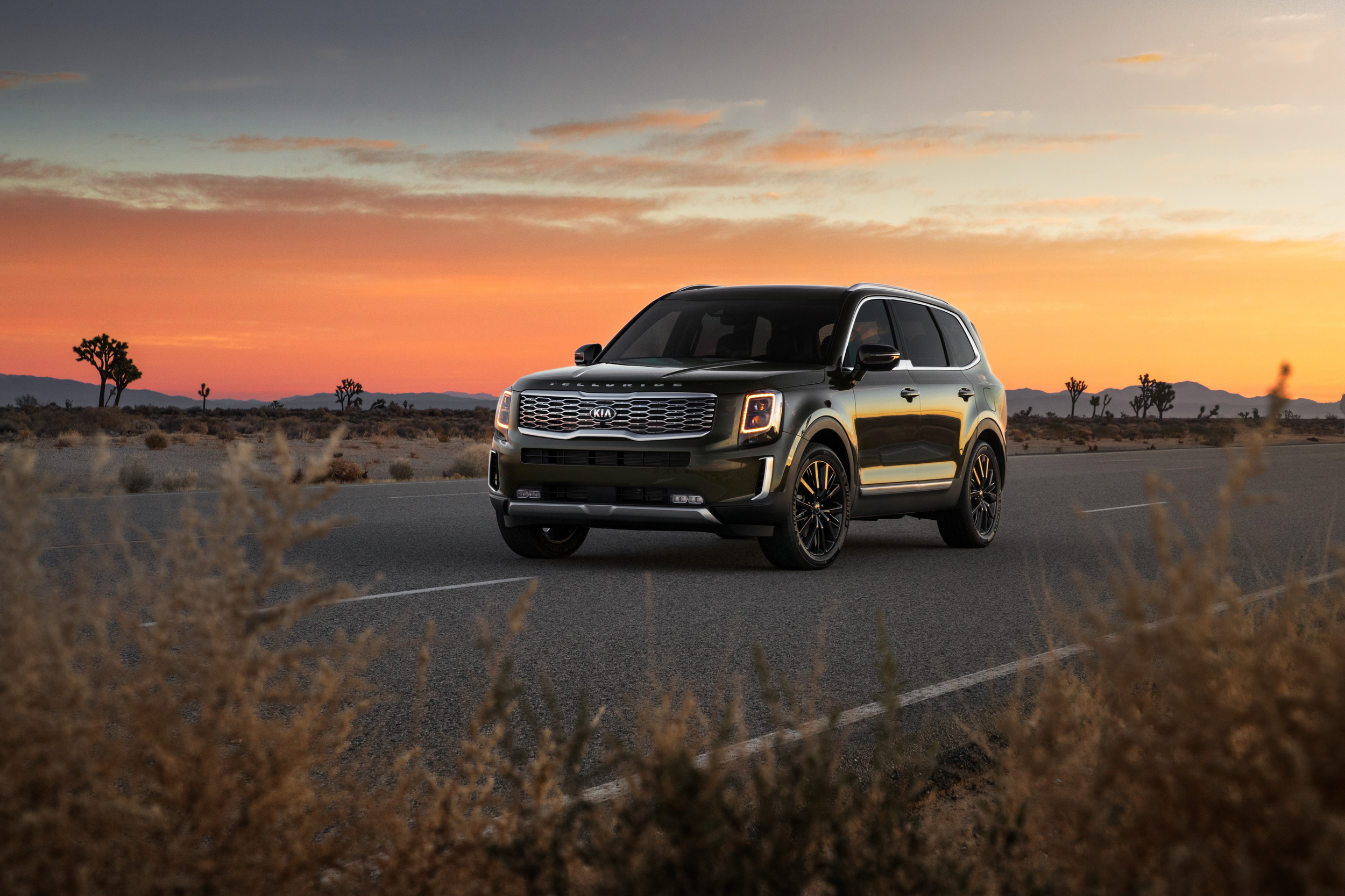 The 2020 Kia Telluride is Kia's push into the Luxury SUV market at a very reasonable price…Click the photo to learn more.