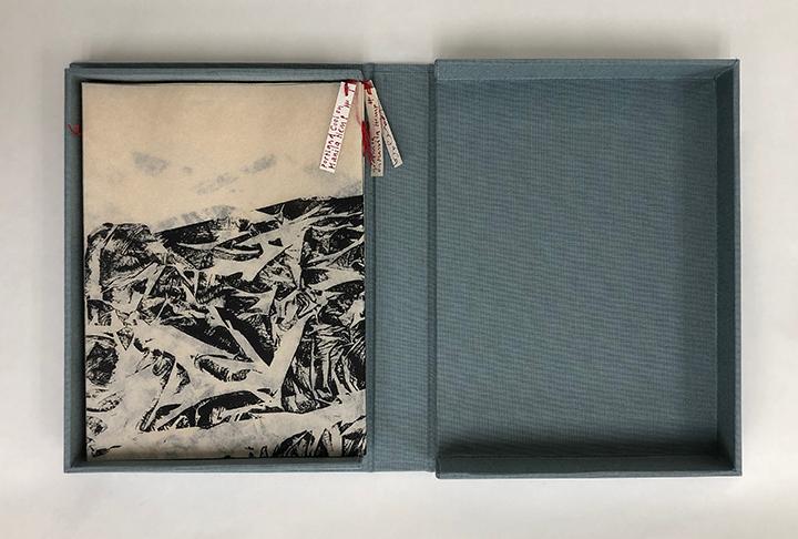 specimenboxsmall.jpg