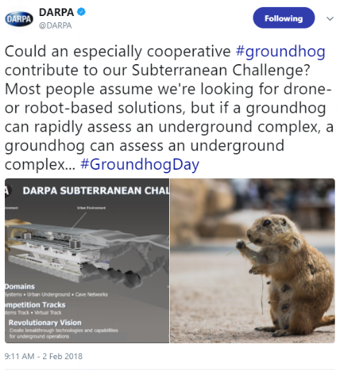 Ground hog day.PNG