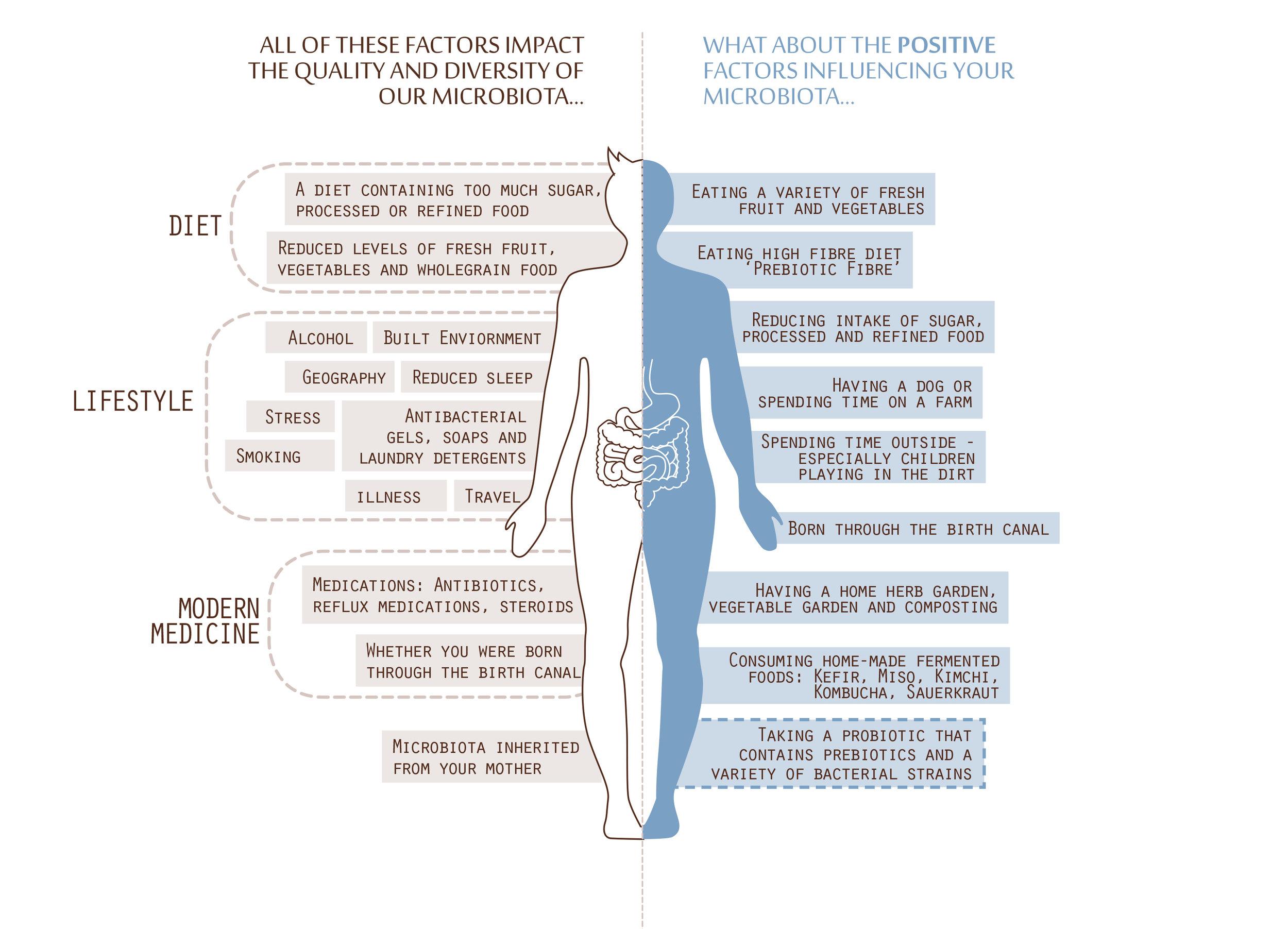 Gut Health Factors