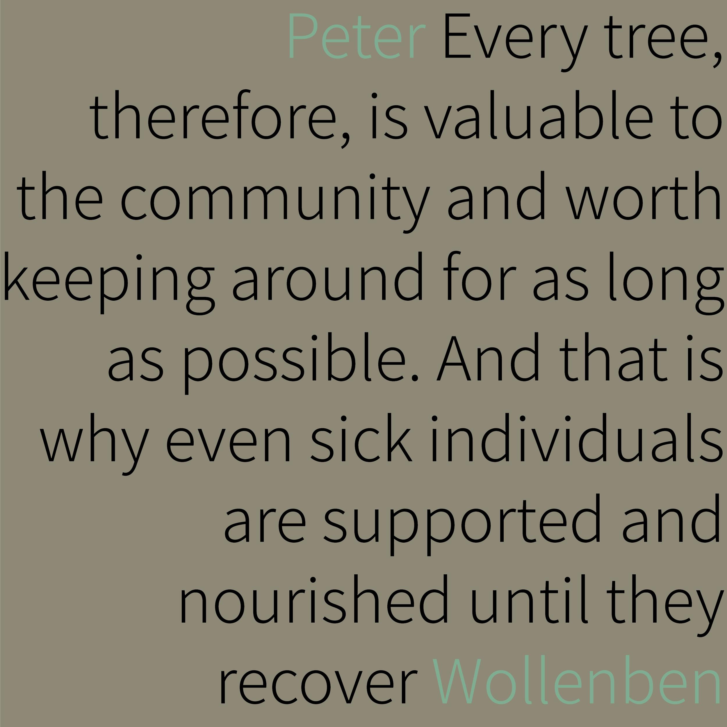 2019.05.29 Peter Wollenben.png