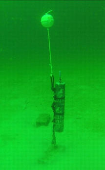 DSG recorder deployed in the Gulf of Mexico
