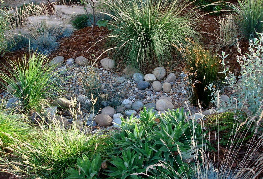 Dry Creeks are an integral part of our landscapes. -