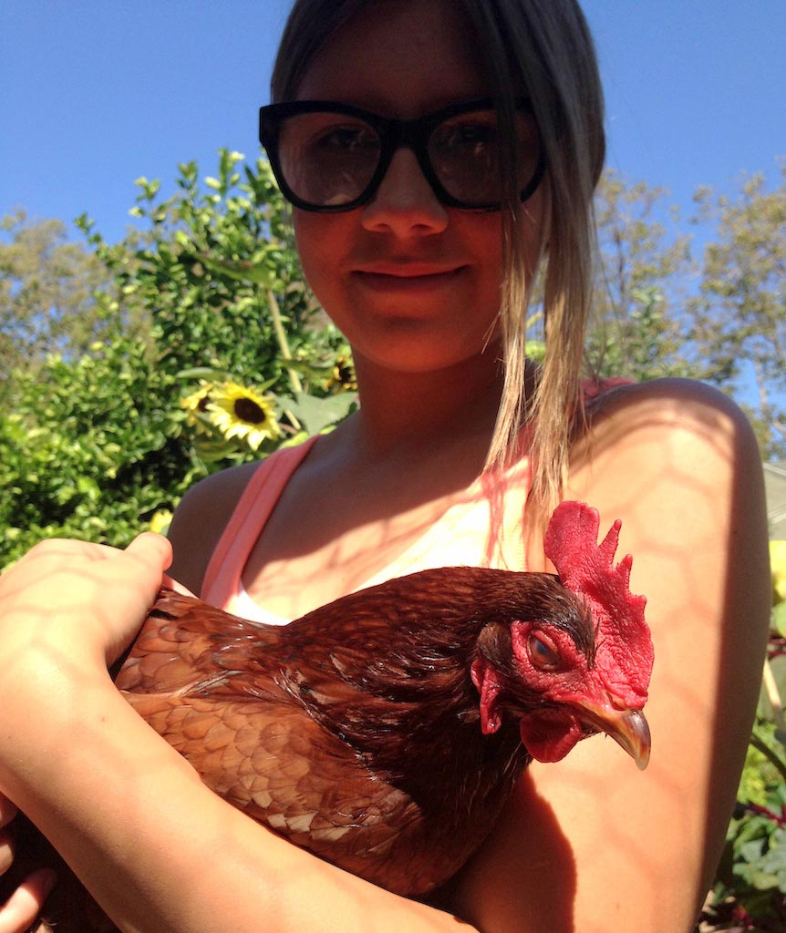 The Smart Yards team will be happy to design and build your chicken coop. -