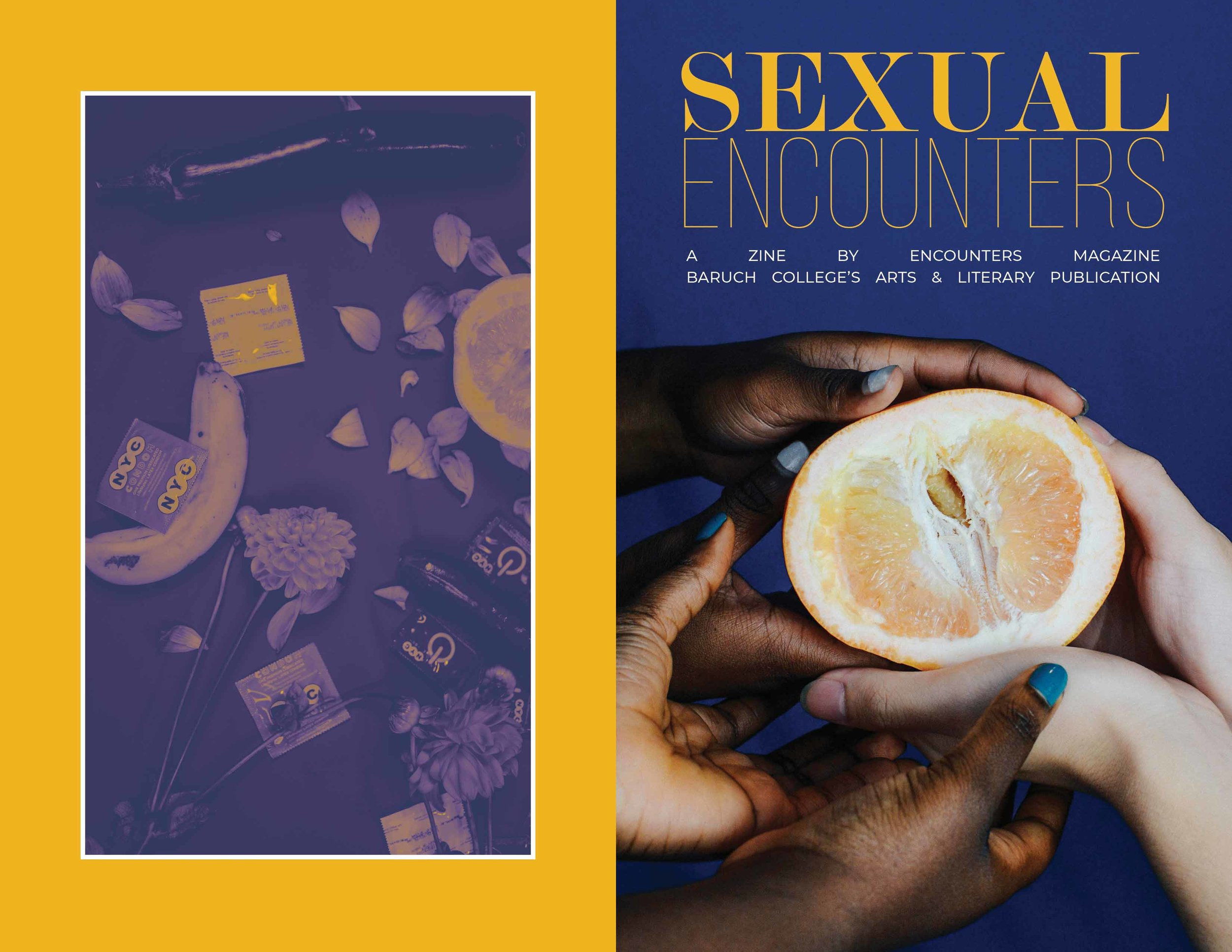 SEXUALENCOUNTERS_COVErs3.jpg