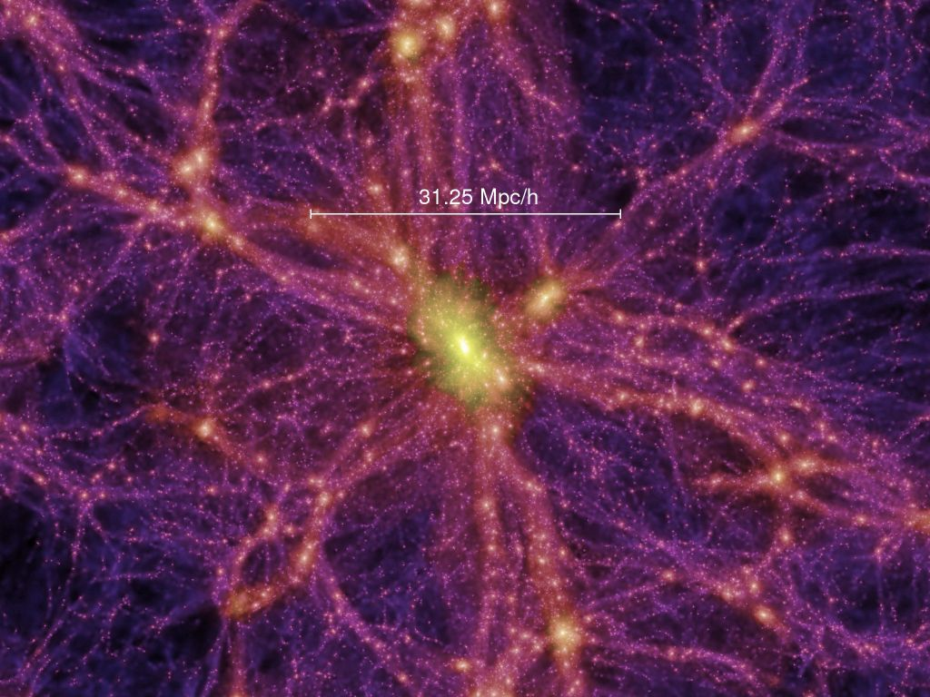 Simulation of the Cosmic Web from the Millennium Simulation Project (Springel et al. 2005, Nature, 435, 629).