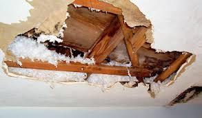 Middleborough, ma area major house ceiling leak damage insurance claim.