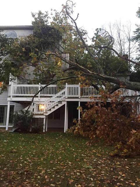 Edgartown MA wind damage claims