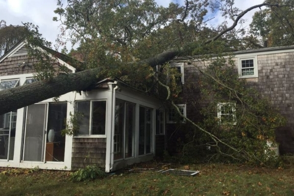 Fairhaven MA wind damage claims
